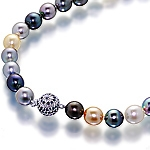 Tahitian multicolour pearl single strand choker